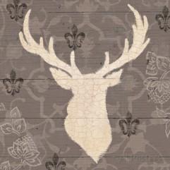 james-wiens-rustic-elegance-i